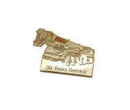 30 years service